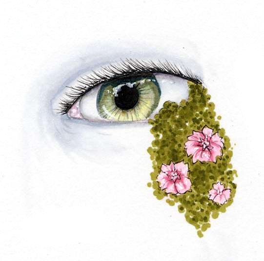 Eye Crust