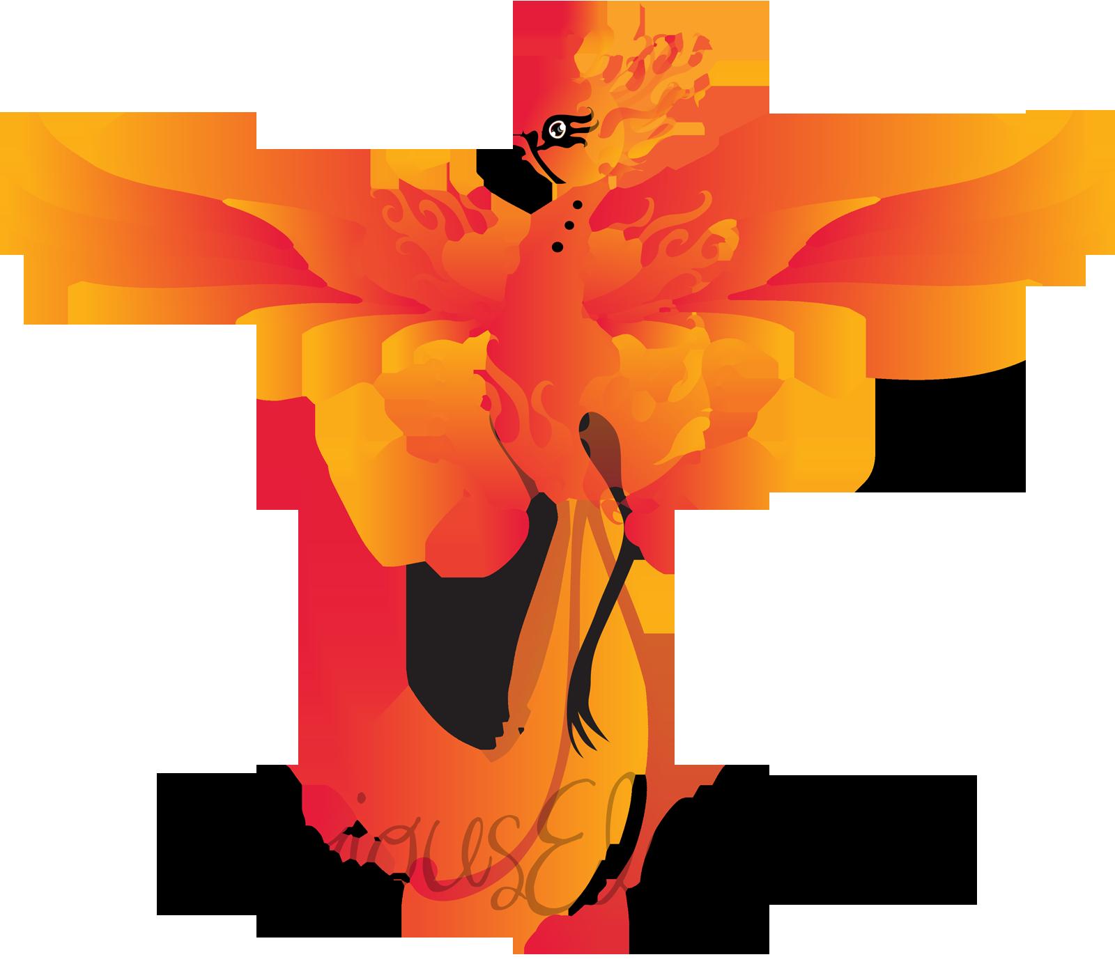 Phoenix Flight