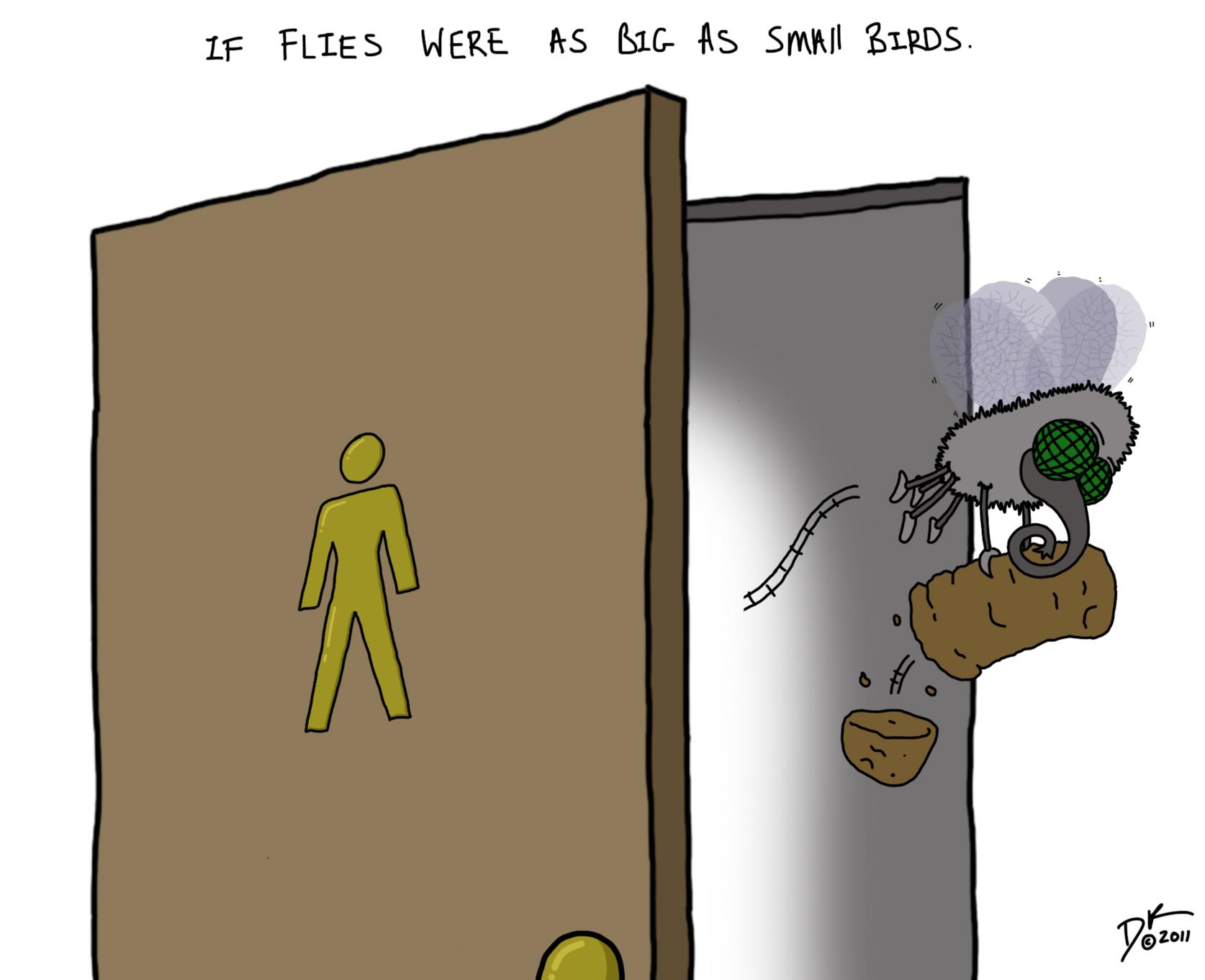Bird Fly