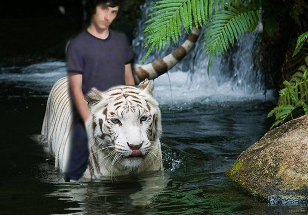 Snow Tiger in the Jungle