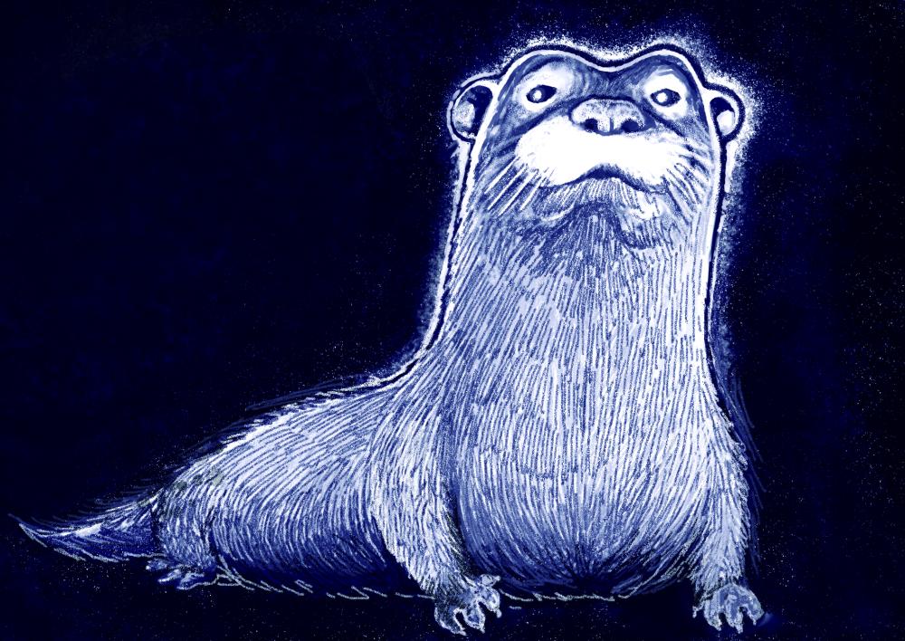Void Otter