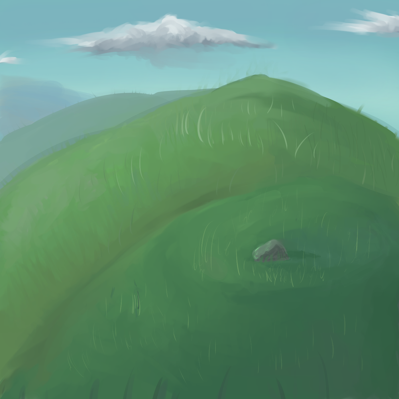 Hill and grass study