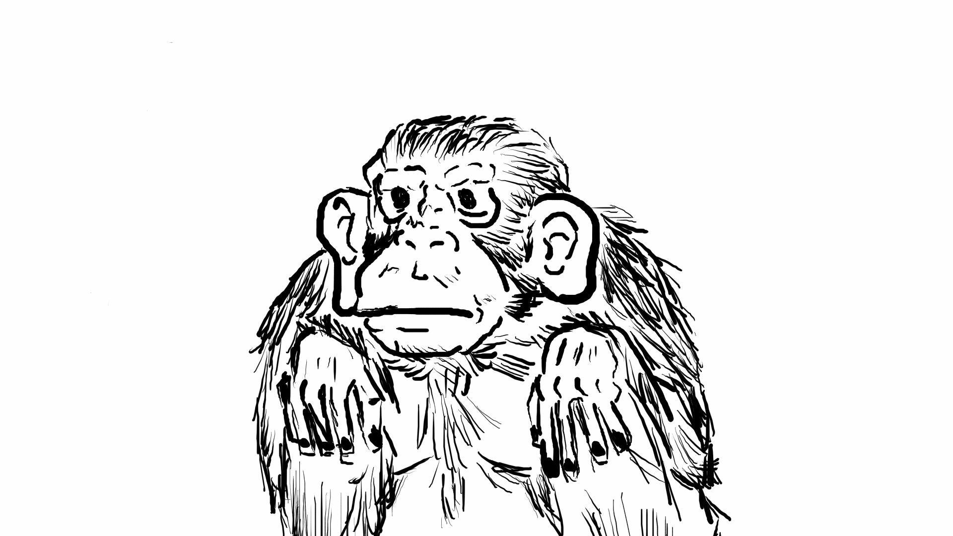 The Monkey!!!