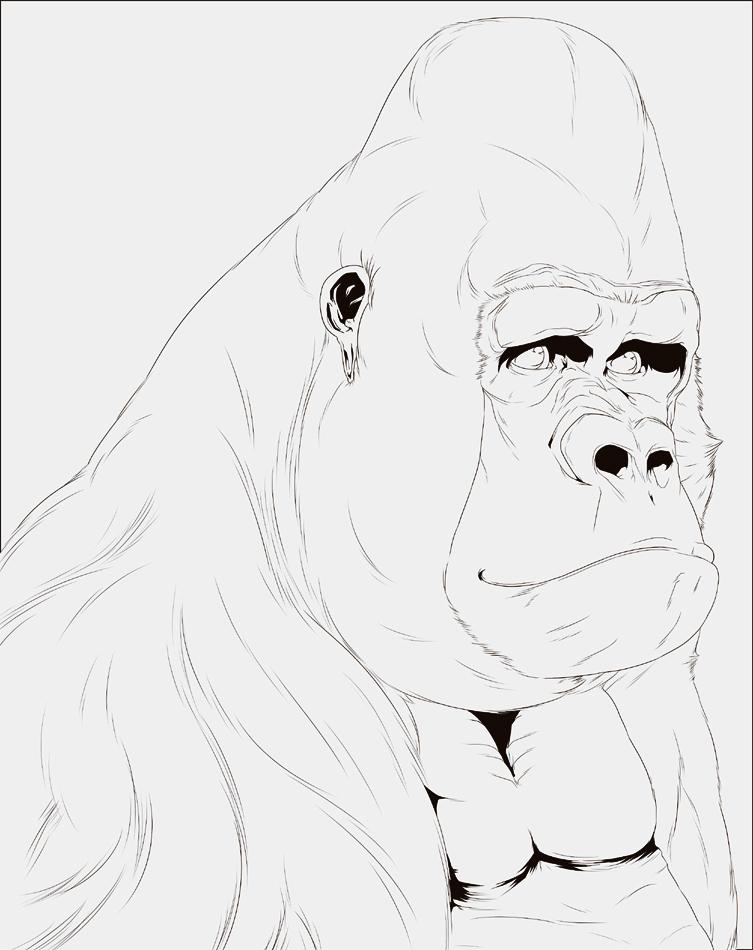 Gorilla Dood