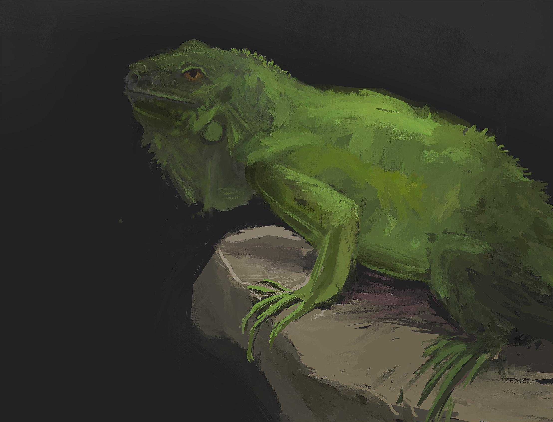 Moms iguana