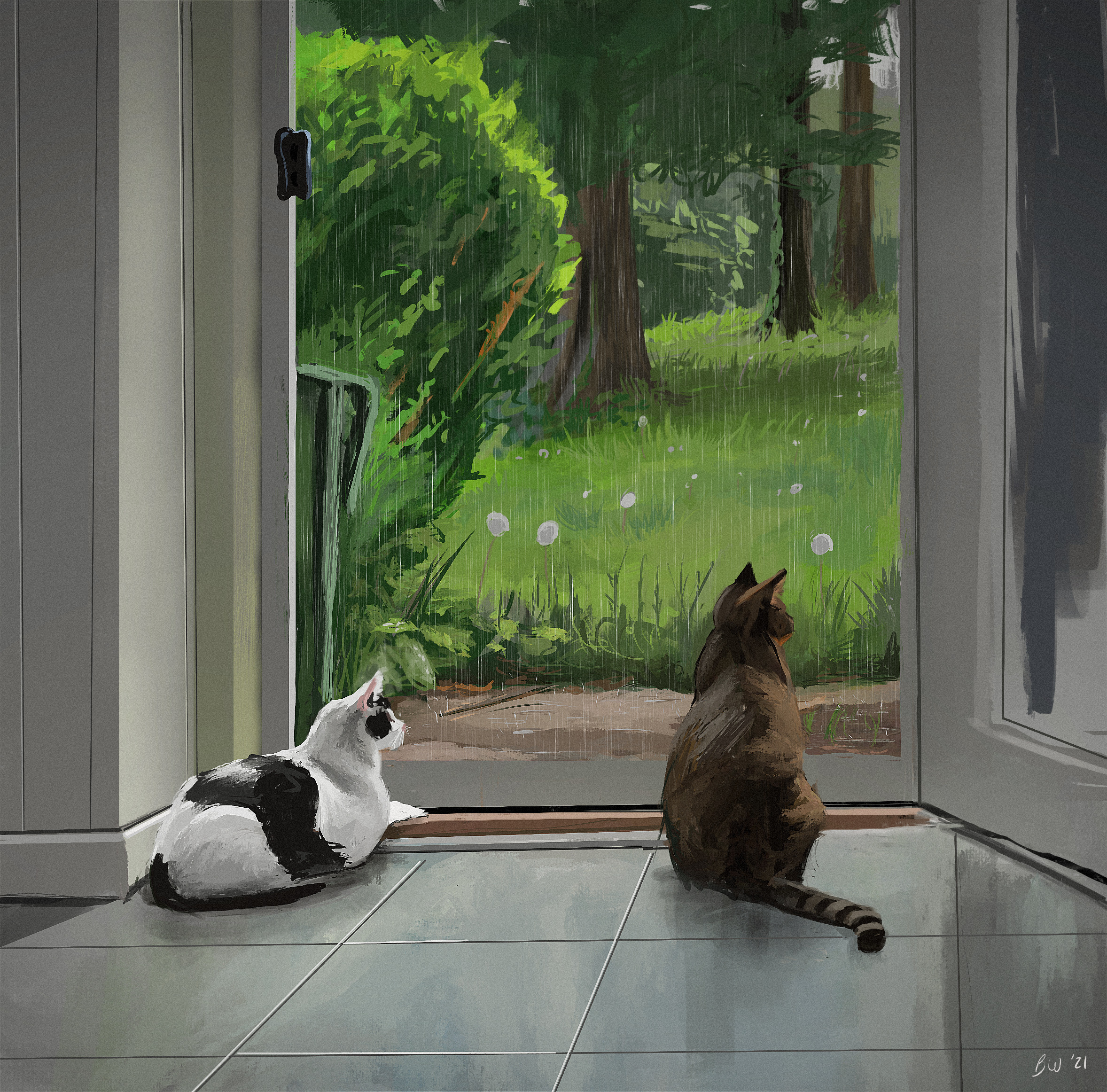 Cats from life