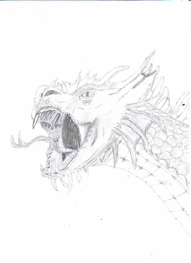 Dragon D