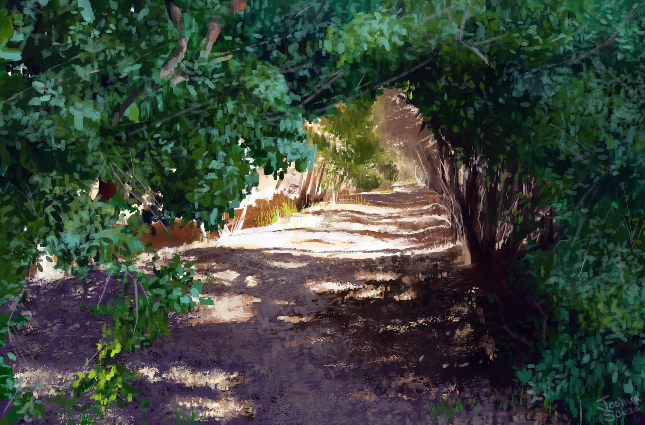 The Illuminated Path