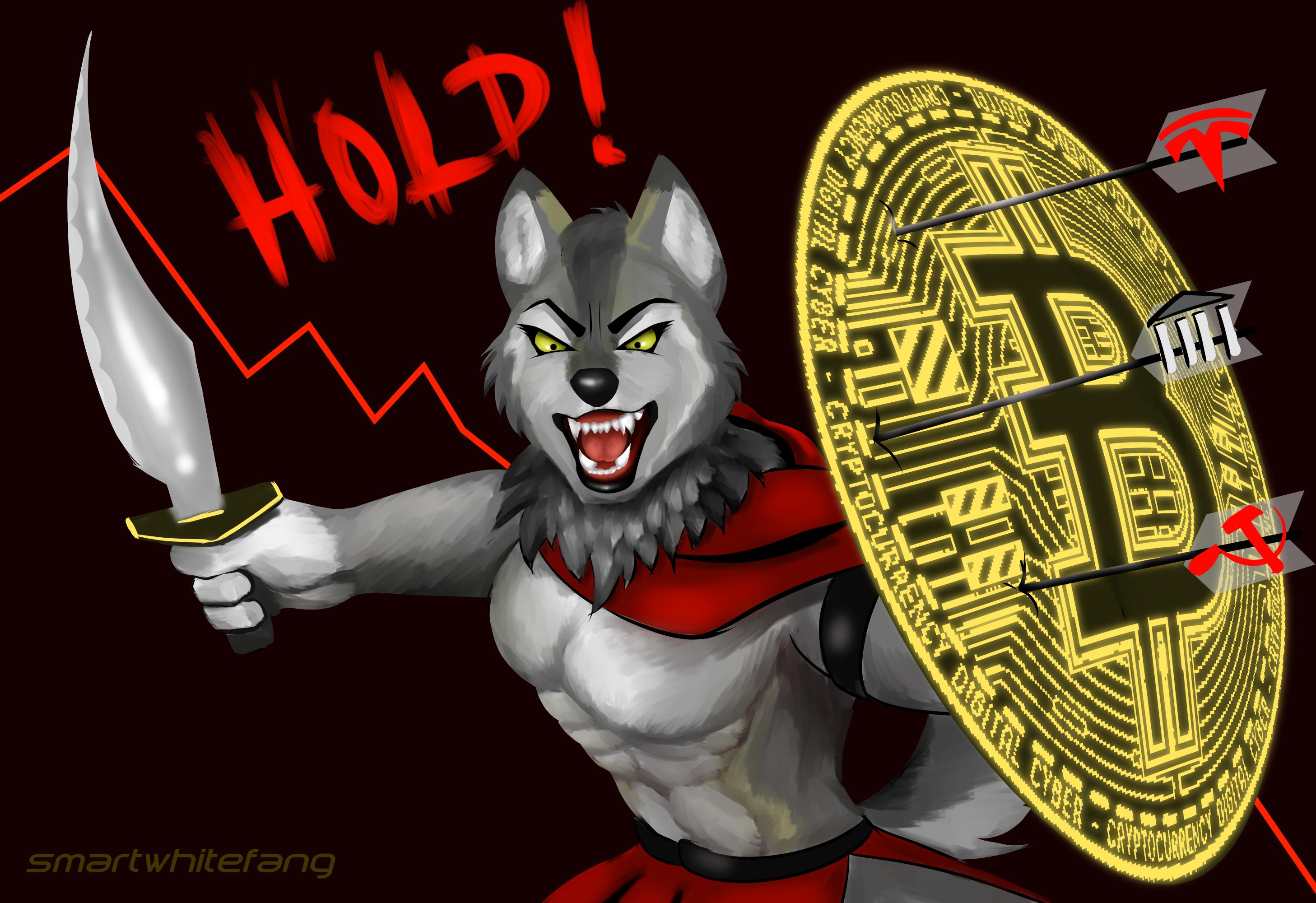 Cripto Wolf