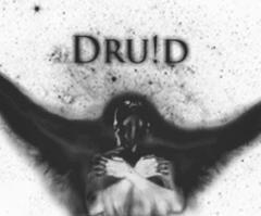 The Wingless Druid