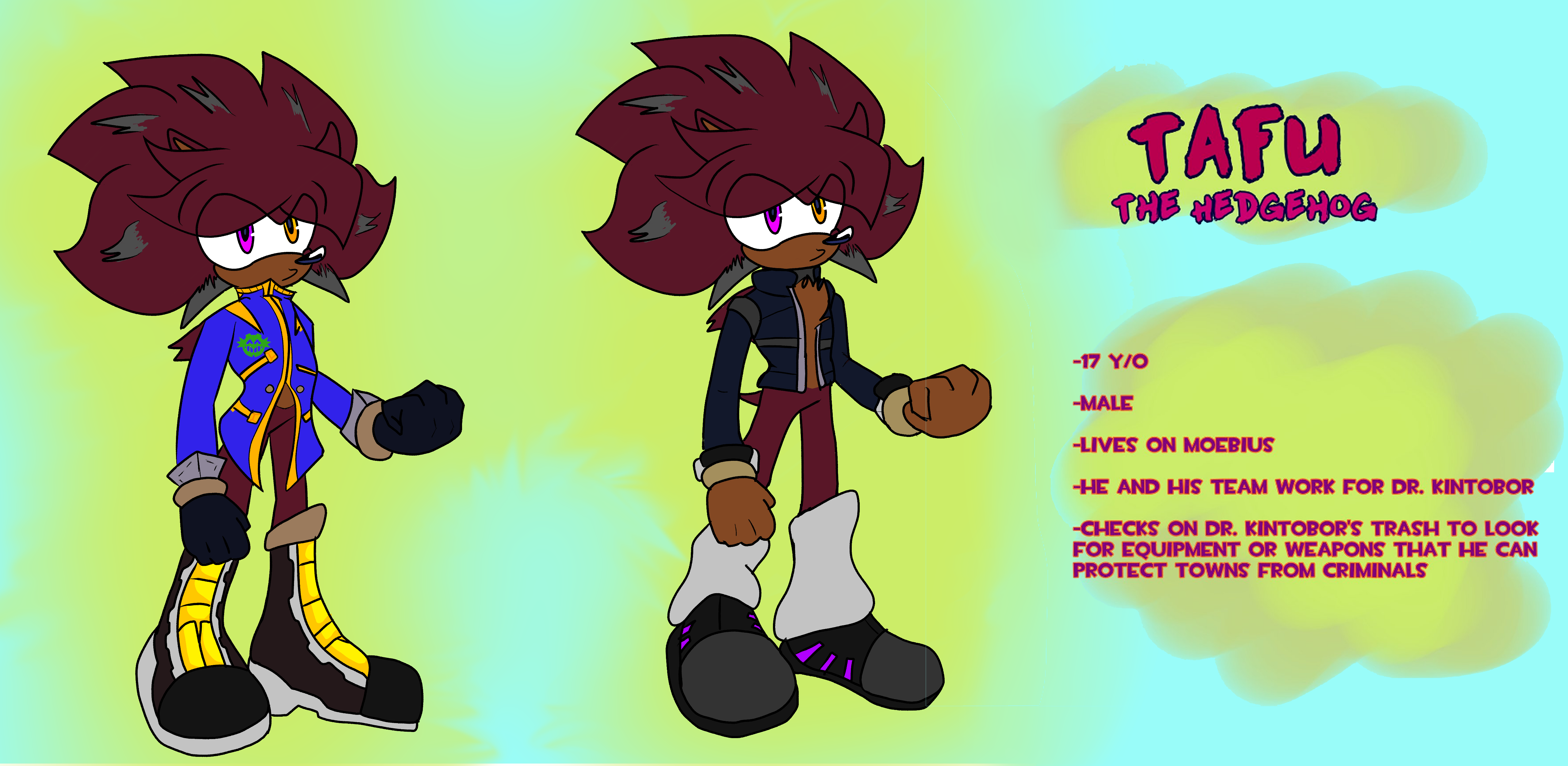 A new reference sheet for my sonic oc