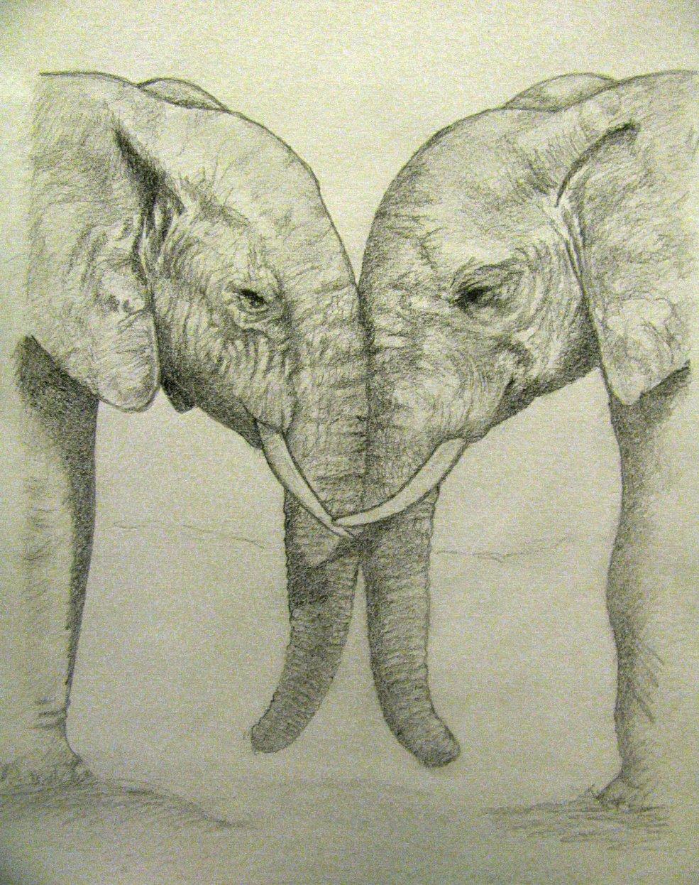 Elephants Can Love