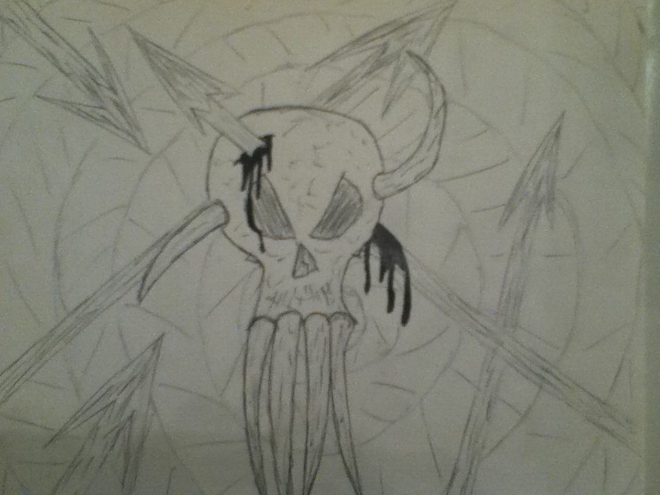 new skull