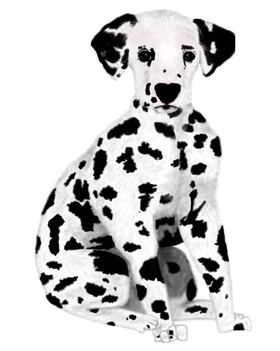 A Dalmatian I made in College