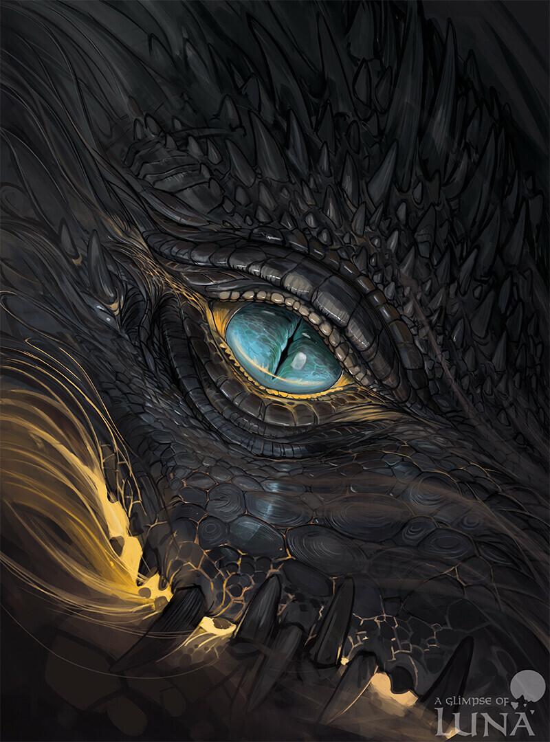 Drakir eye [commission]