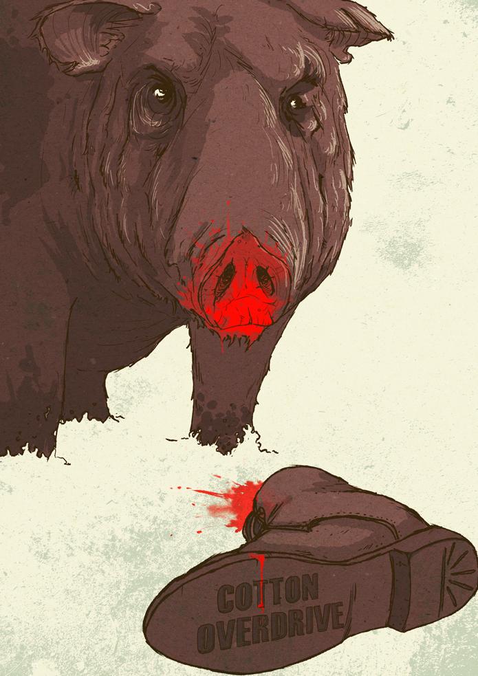 Killer Swine