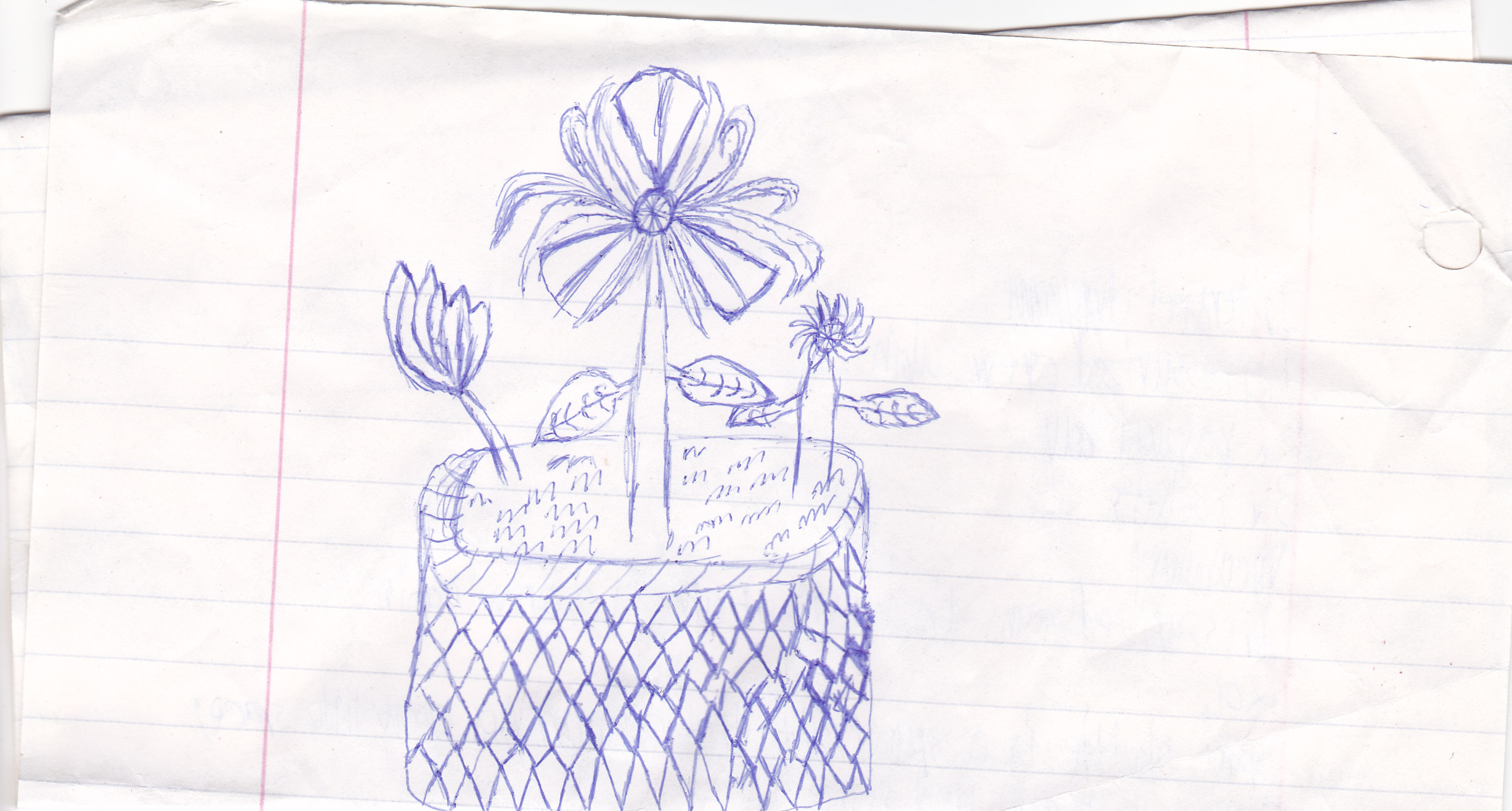 My simple Doodle