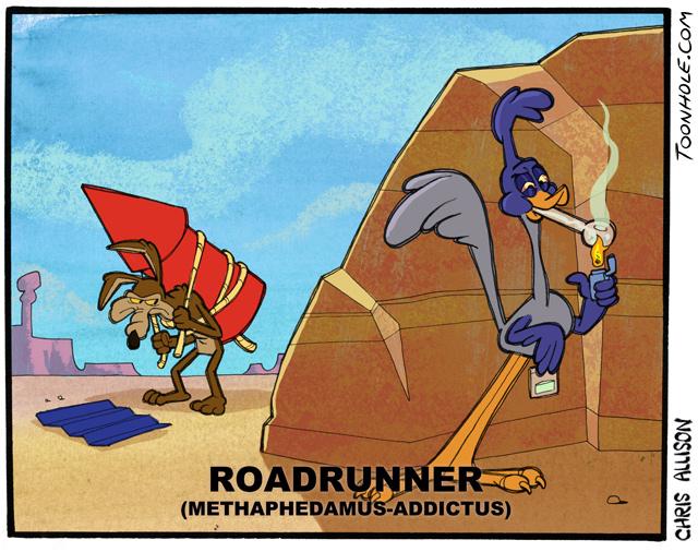 Roadrunner's Habit