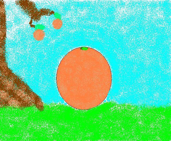 Orange from the Orange Tree