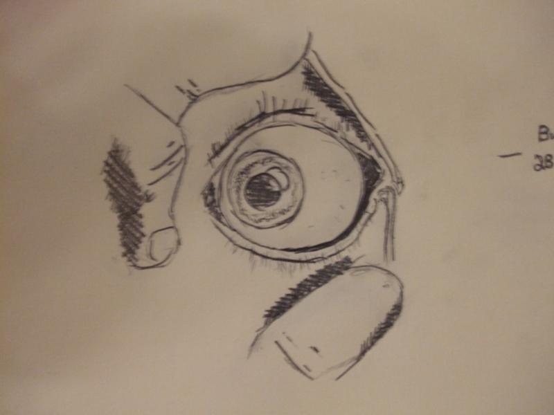 Eye Practice #1