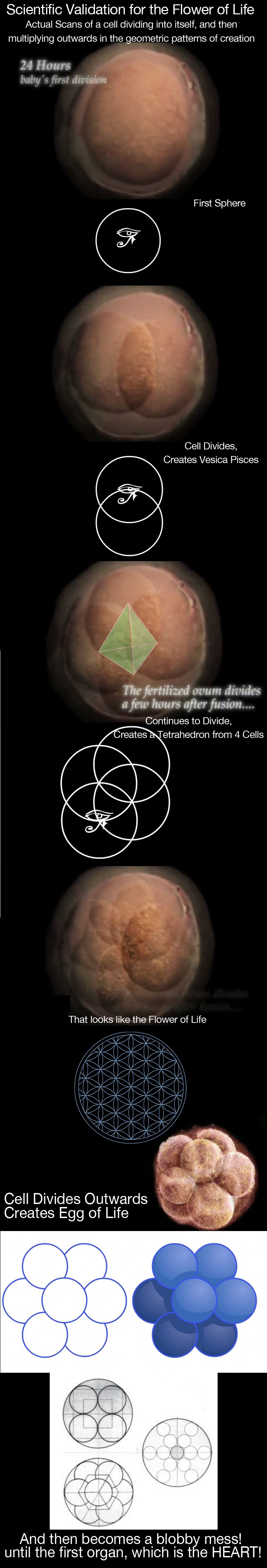 A Cell Transforming
