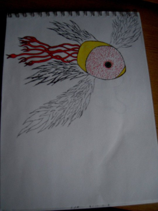Flying eye