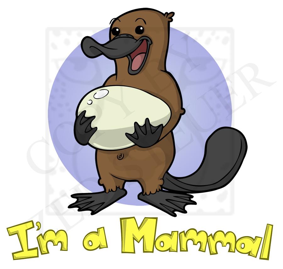 I'm a Mammal!