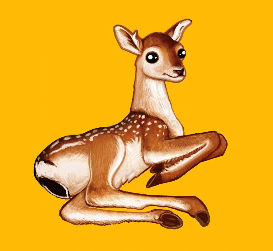 Doe a deer