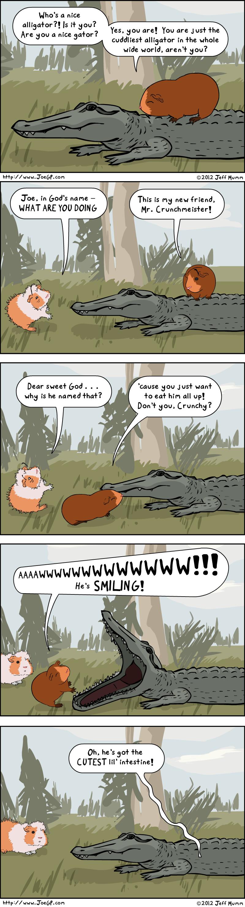 Crocodorable