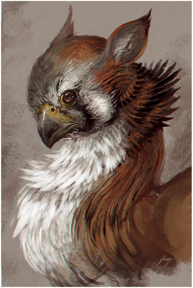 Gryphon Portrait