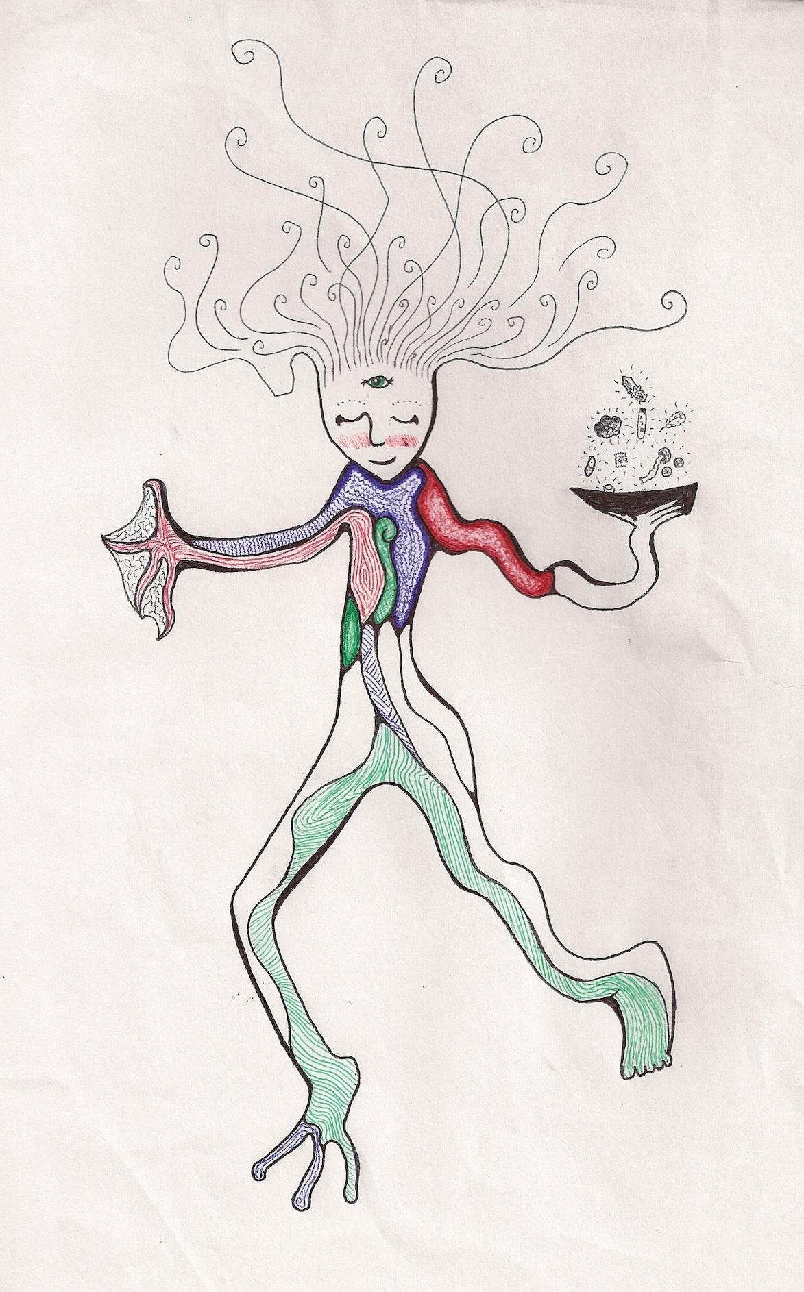 the Conscious Explorer