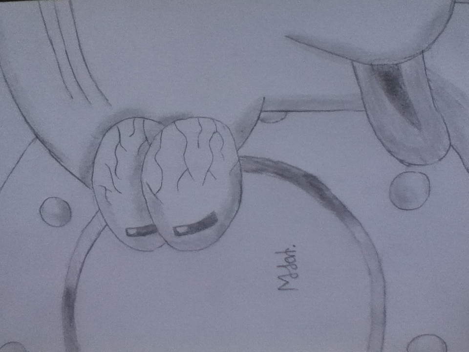 Squidward Sketch