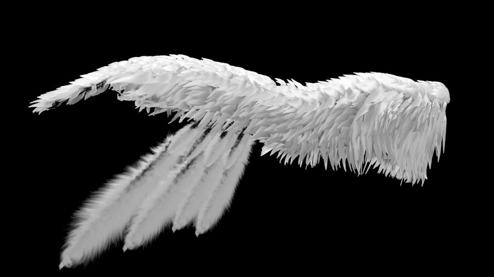 Realistic Angel Wing