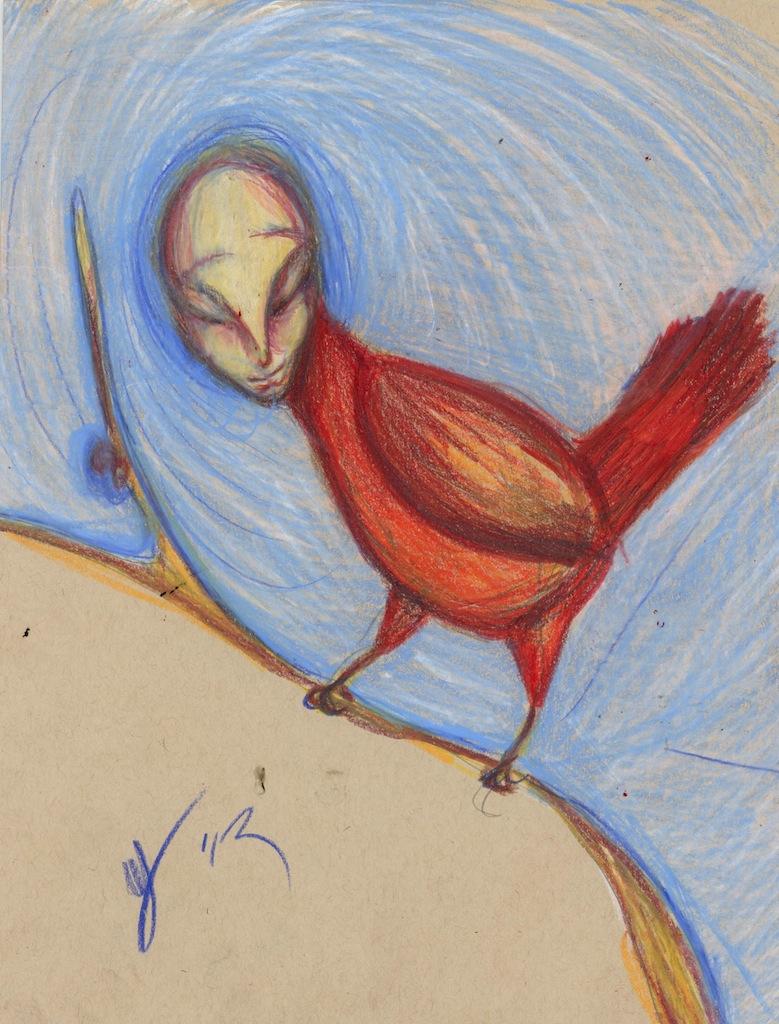 Nosy Cardinal