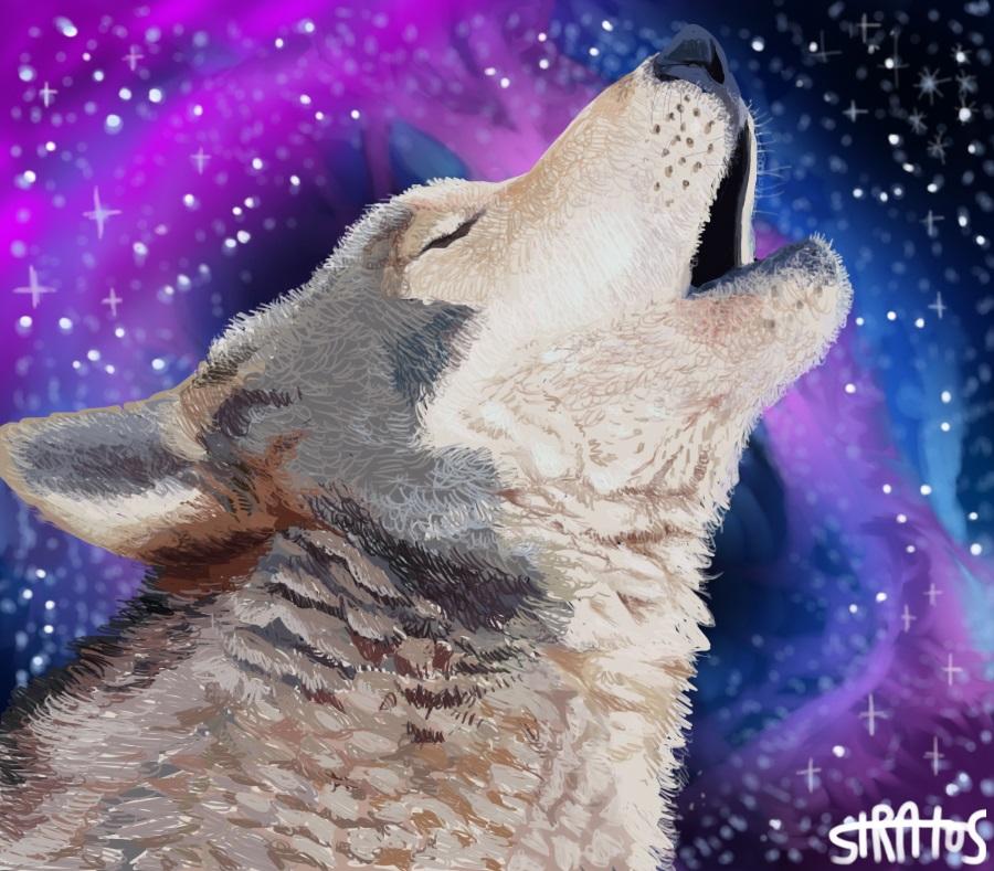 Ironic Wolf Galaxy