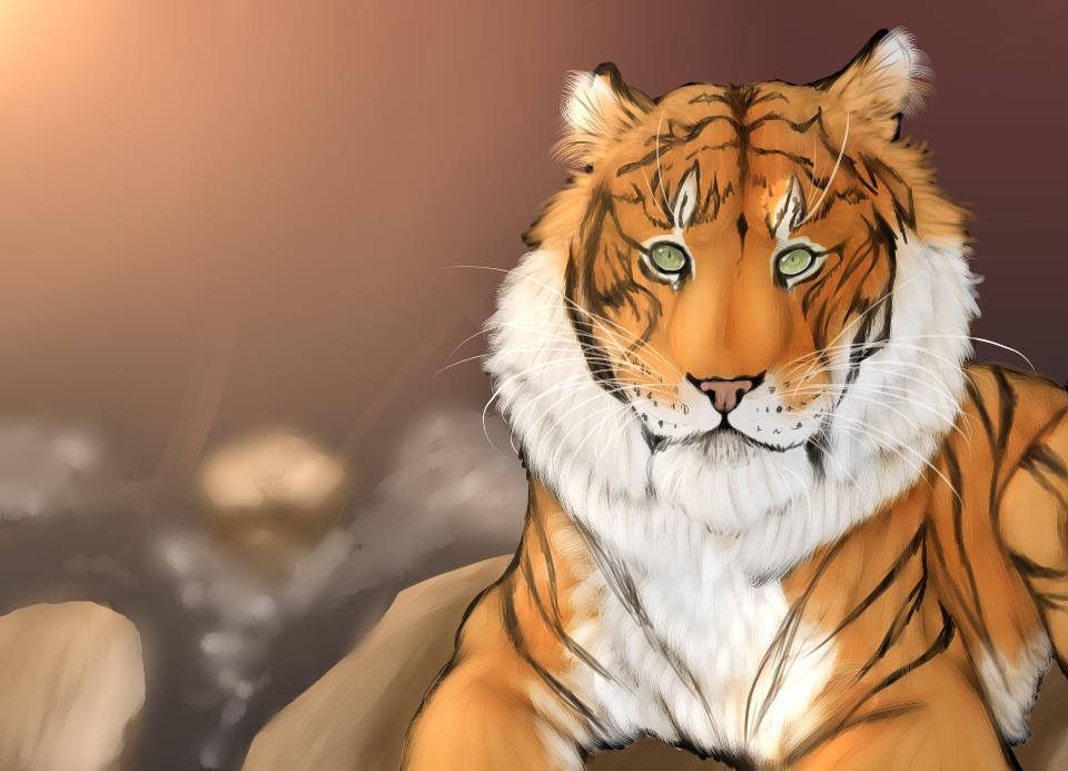 Resting TigerC