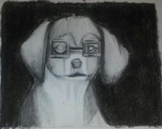 Smart puppy!
