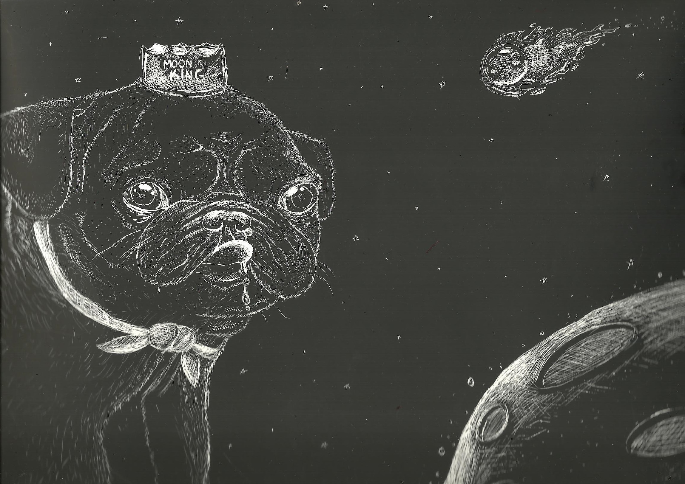 Pugs In Space