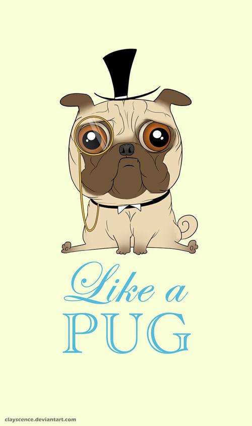 Like a pug