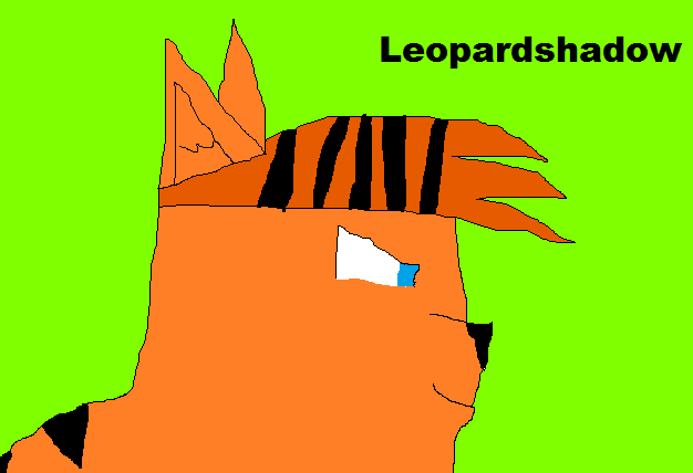 Leopardshadow