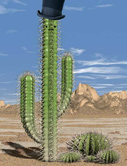 Cactus with a Top Hat
