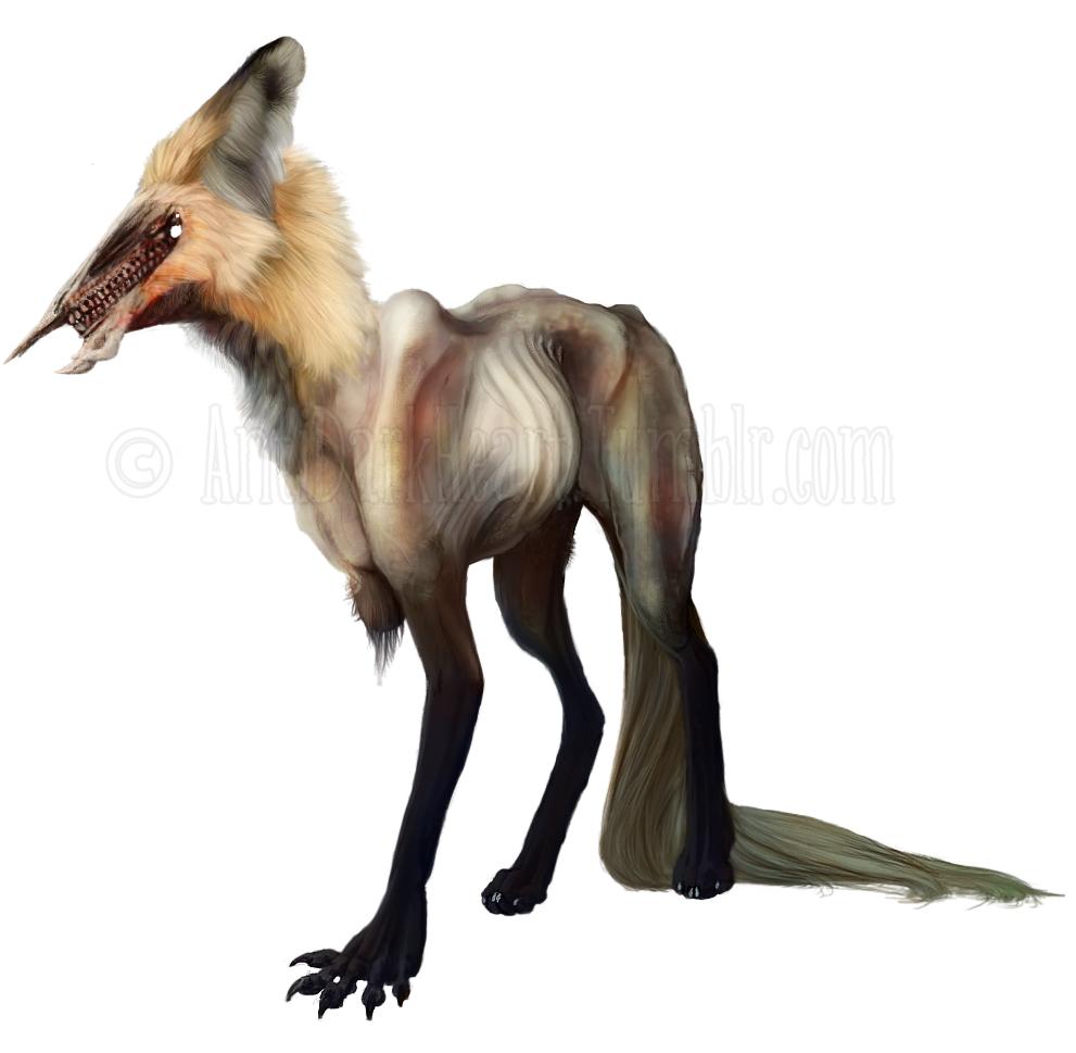 Foxy Concept Design