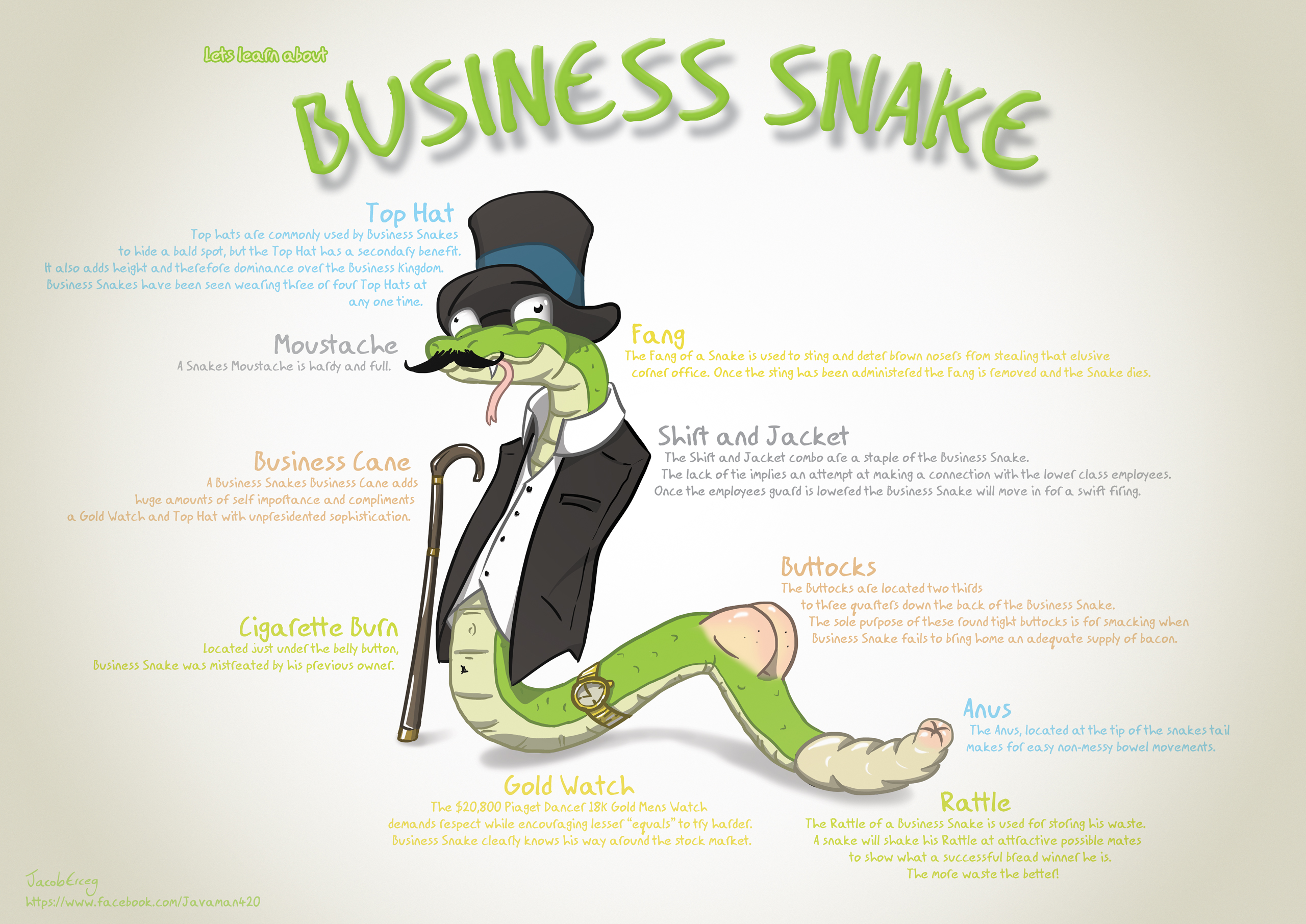 Lets learn bout BUSINESS SNAKE