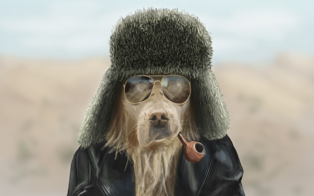 Cool Guy Dog Meme
