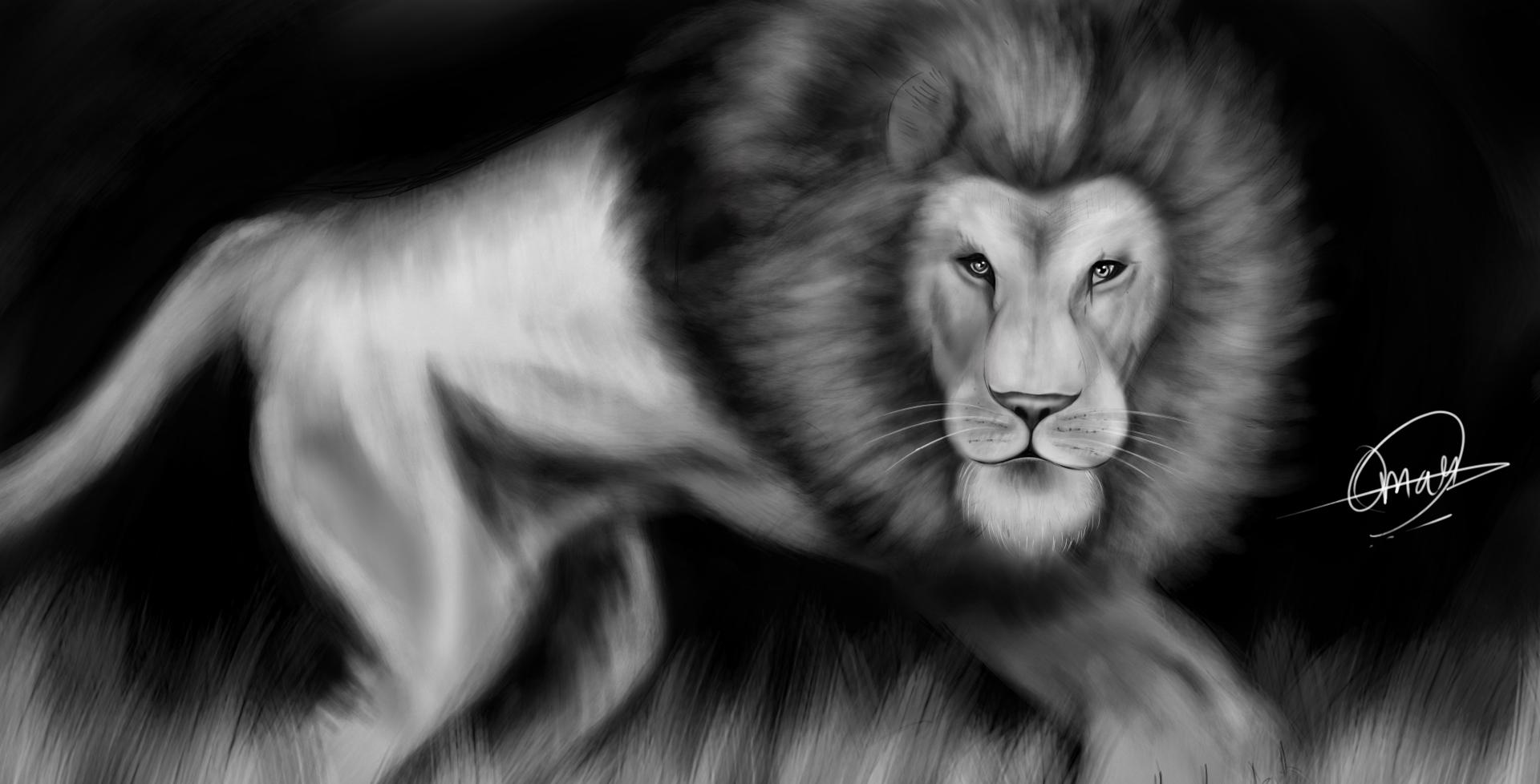 Realistic Lion - Omar Madaein