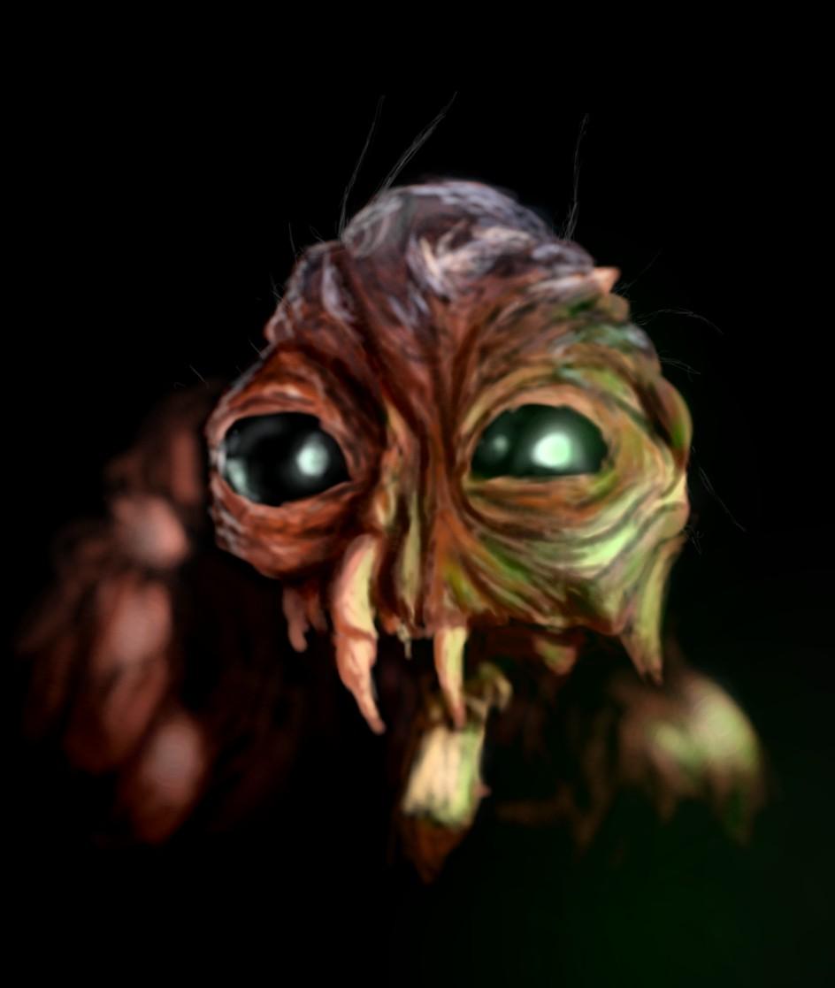 The Brundlefly