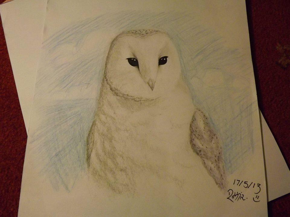 Ms. Owly