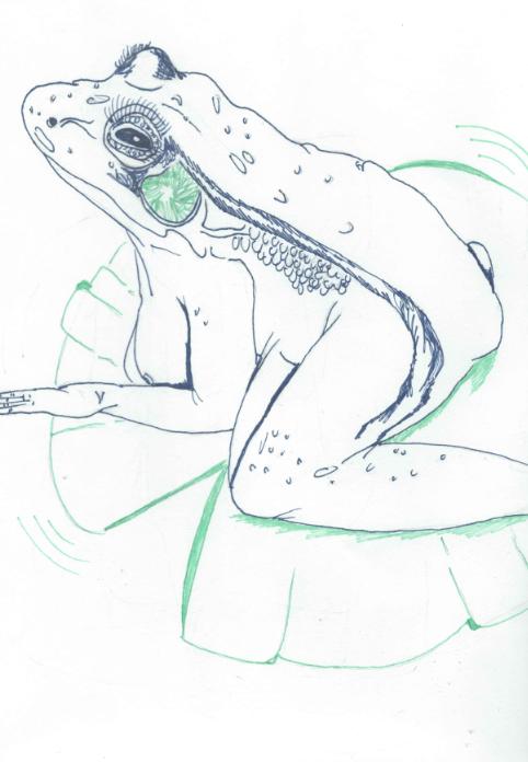 tit toad