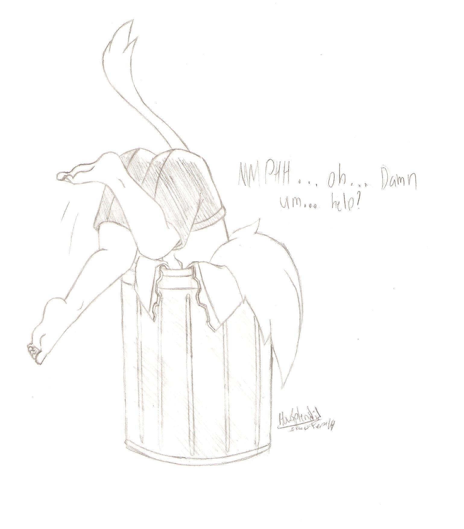 A cat in the trash