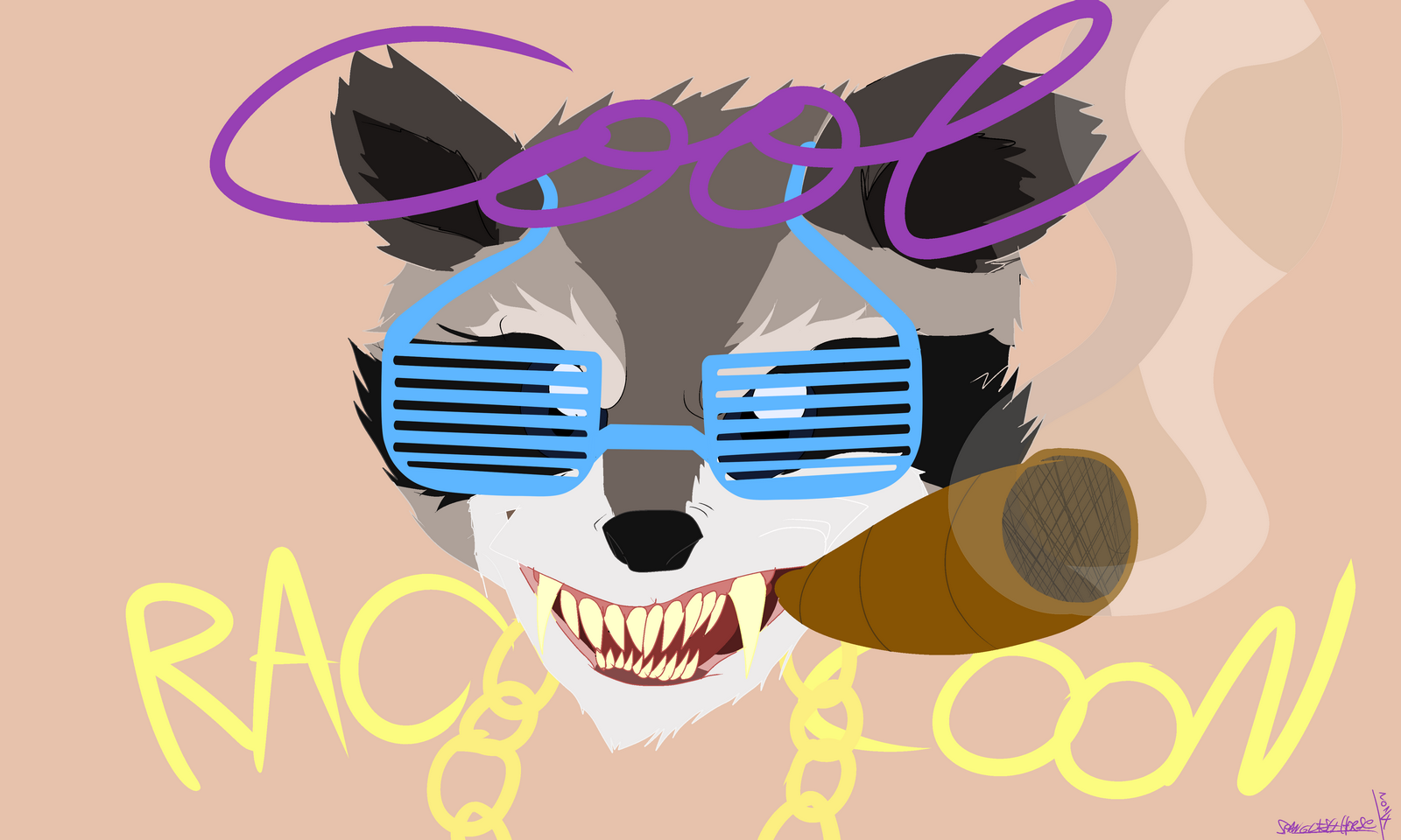 Cool Raccon
